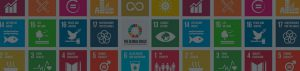 Agenda 2030 and the Public-Private Partnership for its Implementation MEIG Programme